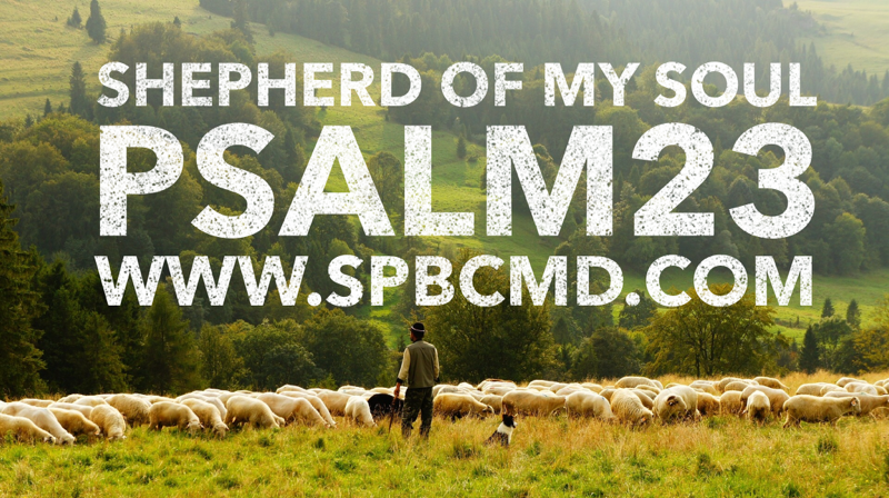 psalm 23 - shepherd of my soul .png